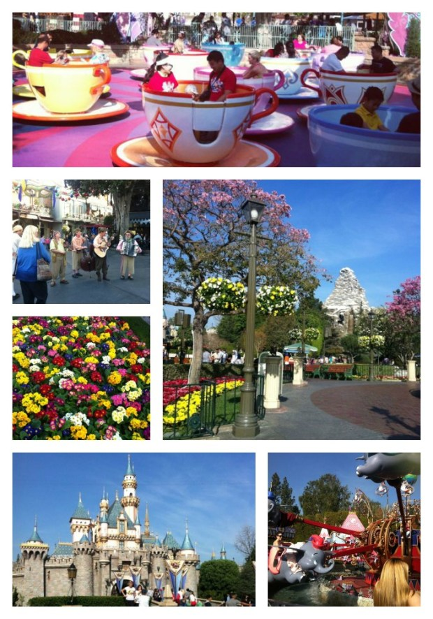 Disneylandcollage1