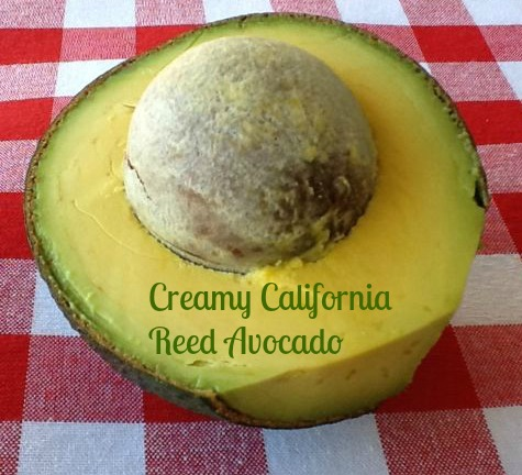 Reed-Avocado-Creamy