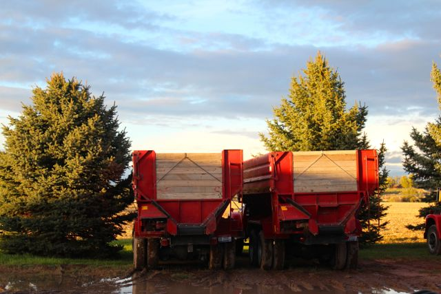 potato trailers