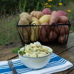Creamy Potato Salad