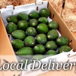 avocados for So Calif delivery at a special price