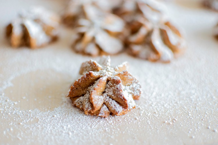 Gingerbread Spritz Cookies, the best Christmas cookie recipe. Easy and delicious gingerbread cookie recipe. Easy and simple Gingerbread Spritz Cookie Recipe that is perfect for any holiday cookie exchange or holiday cookie box. The best unique gingerbread holiday cookie recipe. Gingerbread Christmas cookie recipe. High altitude Gingerbread Spritz Cookie recipe. A Christmas story, The Spirit of Christmas along with a holiday cookie recipe. #organiccookies #gingerbread #gingerbreadcookies #christmascookies #holidaycookies #highaltitudecookies
