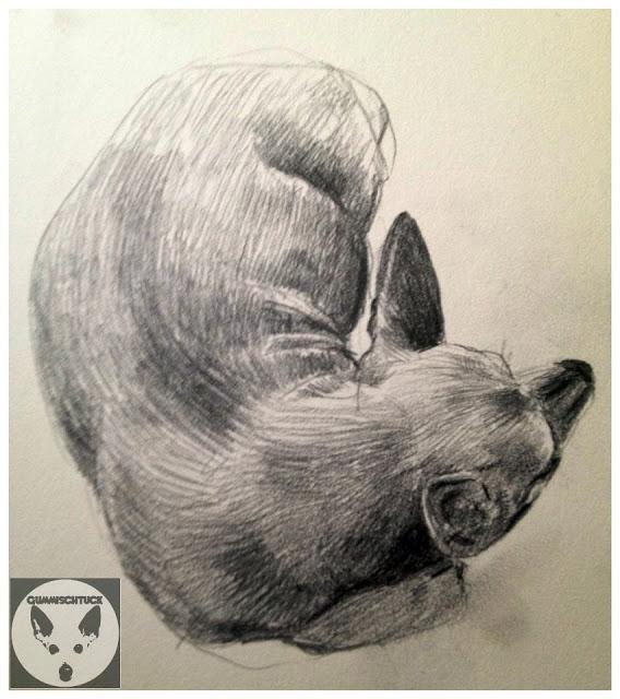 model sketching dog