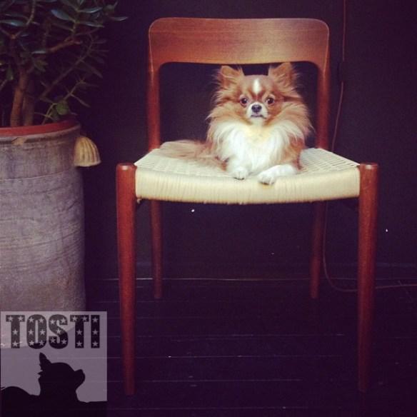 tosti_chair