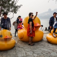 rubber duck in beijing