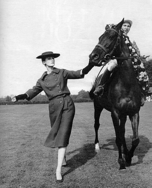 Dior-Horse