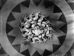 Kaleidoscopes by Busby Berkeley