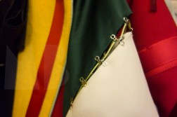 Tung Trinh, detail of coat