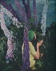 garden_edward_steichen