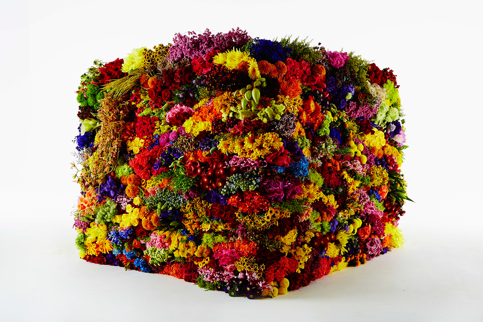 azuma makoto represents the stages of decomposition using flowers + leaves