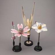 Victorian Botanical model