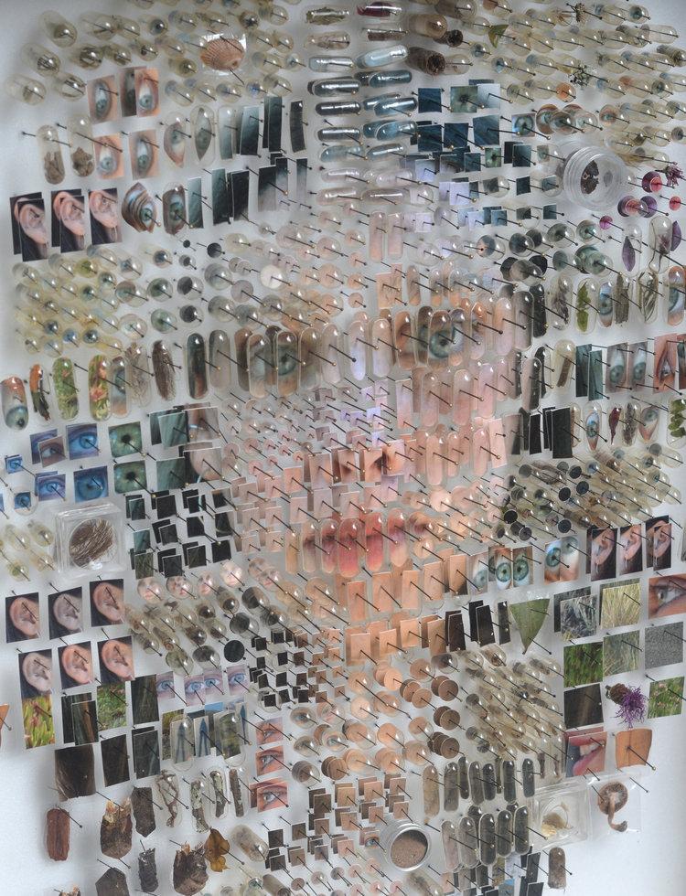 Michael Mapes Human Specimens