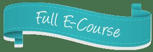 No Shenanigans! E-course banner