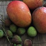 台湾や香港からフルーツや香辛料、日本へ持ち込んでもいいの?植物防疫情報まとめ