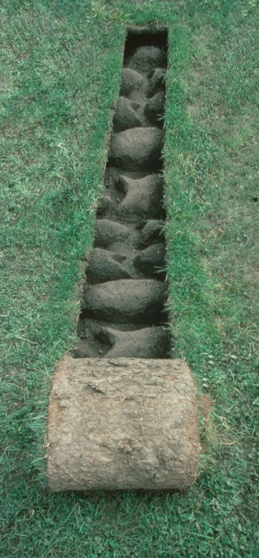 The Irrestistable Force-Fibreglass, soil, turf