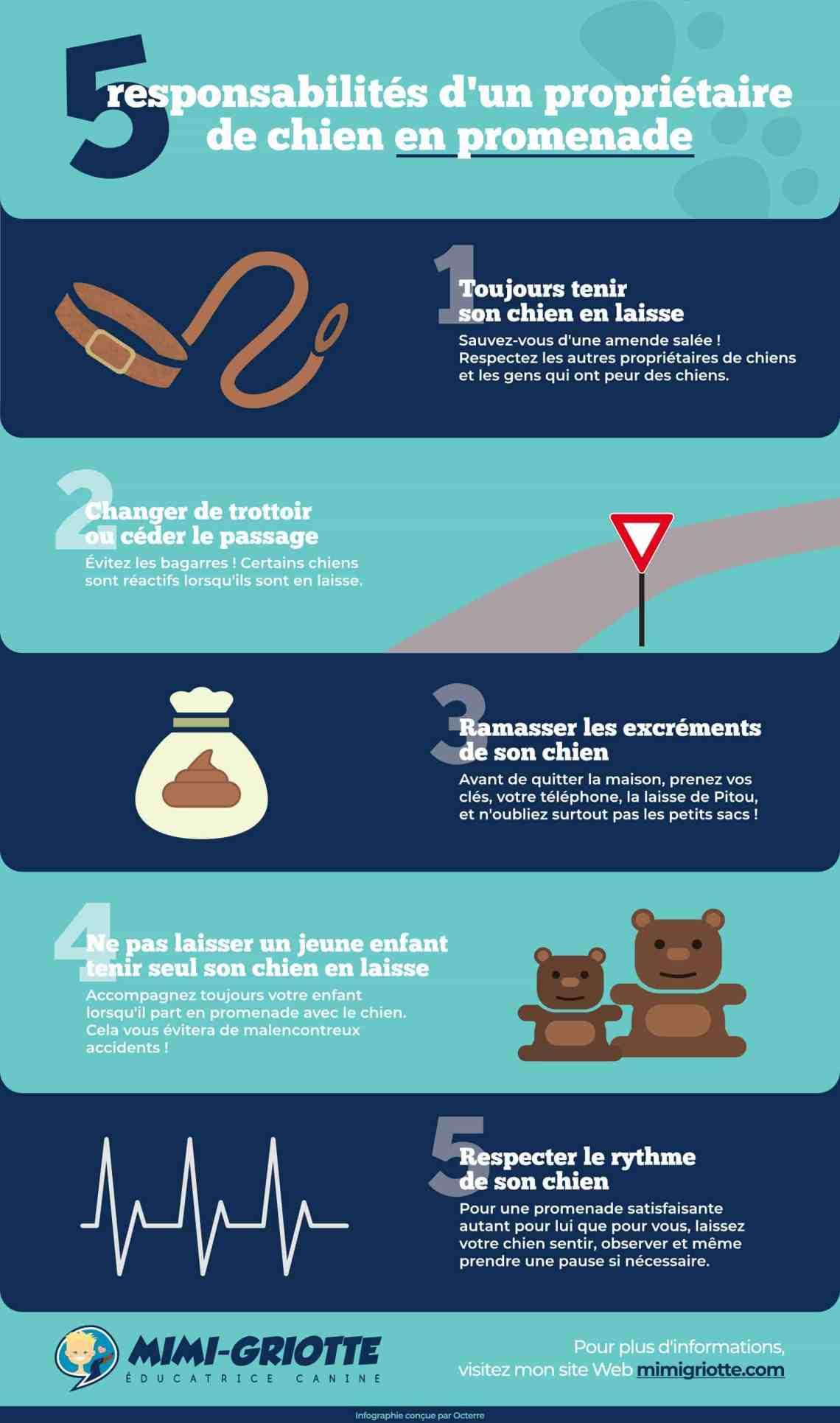 5 responsabilités fondamentales d'un propriétaire de chien