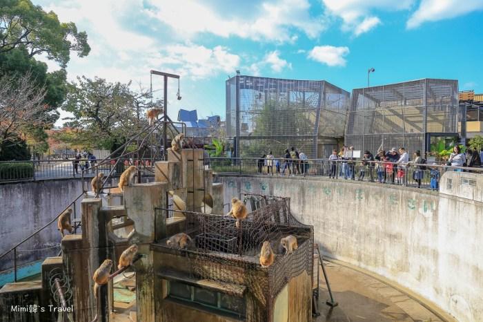 【京都】京都動物園玩樂&門票交通攻略!小巧精緻的京都親子景點,鄰平安神宮、南禪寺、蹴上鐵道