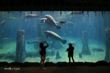 【新加坡】河川生態園 River Safari:便宜門票&參觀攻略,必玩亞馬遜游船&海牛水槽