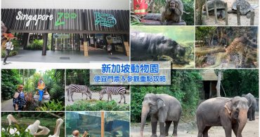 【新加坡動物園】便宜門票&參觀重點攻略!動物自然接觸,還能餵大象、犀牛和長頸鹿