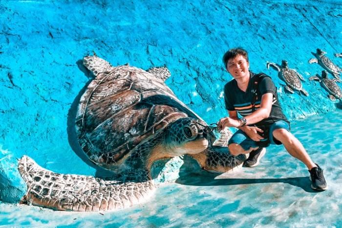澎湖|竹灣大義宮珊瑚洞、大海龜立體造景&網美景觀台,三個澎湖IG景點一次打卡。