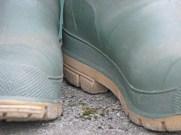 bootsblog