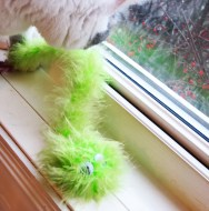 greencattoy