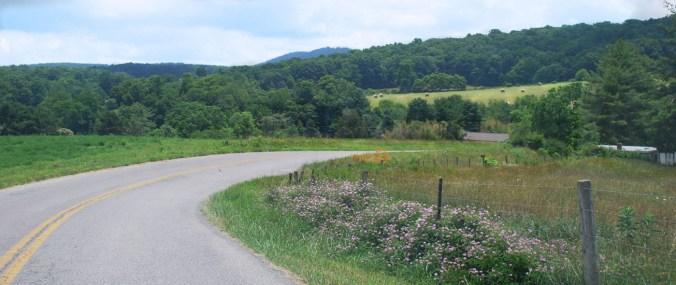 road-pasture