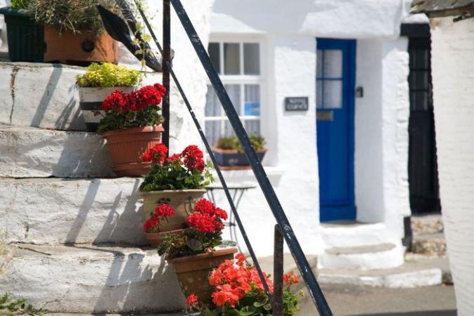 flowers-steps