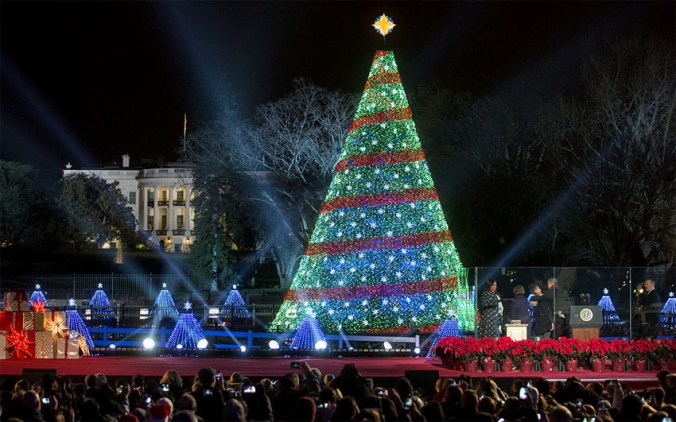 national-christmas-tree