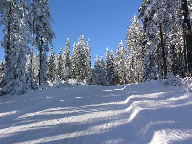vintervag_mellan