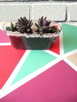 Mesa en detalle con cactus