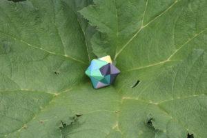 Een van gekleurd papier gevouwen stervorm, genesteld in een groot blad waarin je je kunt ontplooien!