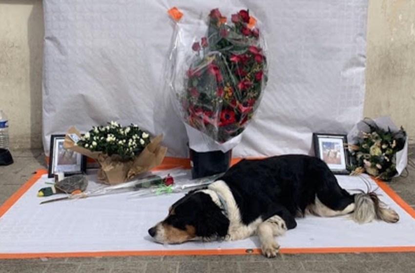 Indigente muere de tristeza luego de  que le robaran a su perro