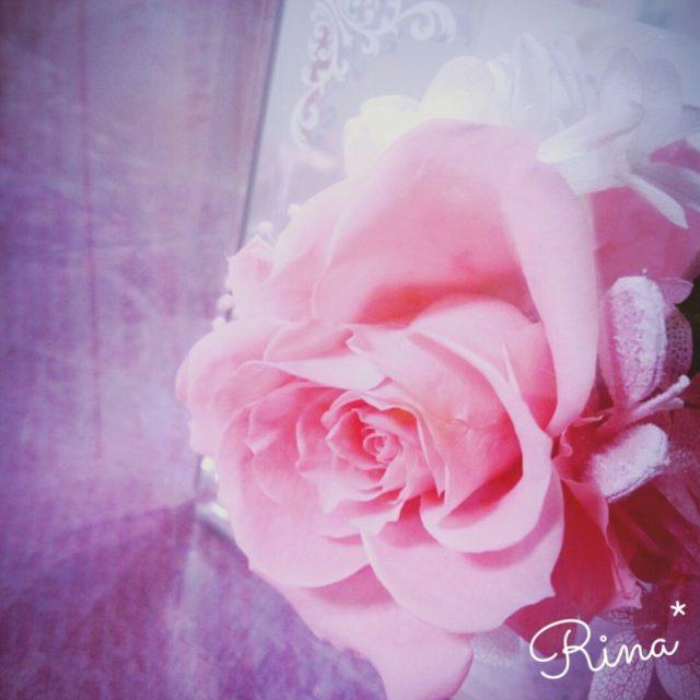 camerancollage2014_12_29_222609
