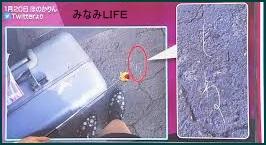 hono20 ほのかりん カップ水着・川谷・ゴム・しねのツイッター画像