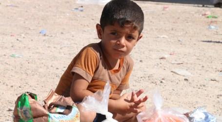 Pekerja Anak di Irak Jadi Tulang Punggung Keluarga