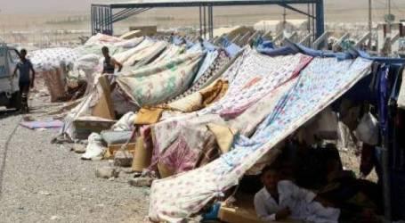 Lembaga Pangan Dunia Kurangi Bantuan untuk 1,4 Juta Pengungsi Irak