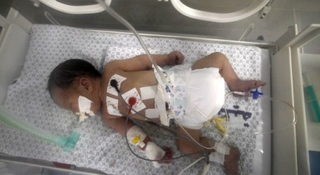 Bayi Prematur Palestina dan Ibunya Bertemu Setelah Pisah Enam Bulan
