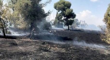 "Layang-Layang Hamas Bakar Pemukiman Ilegal Israel ""Mata Ketiga"""