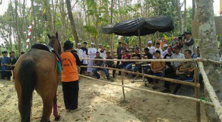 Kampung Islam Muhajirun Negararatu Kini Miliki Wisata Berkuda