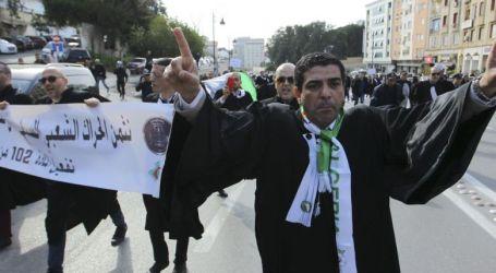 Seribu Pengacara: Pencalonan Bouteflika Tidak Dapat Diterima