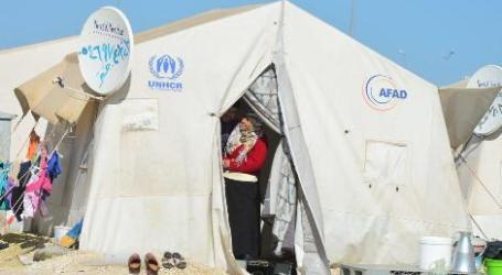 Turki: 330 Ribu Warga Suriah Pulang ke Rumah Setelah Operasi Turki