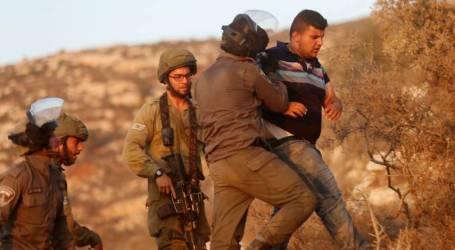 Tiga Pemuda Pejuang Palestina di Bethlehem dan Qalqilya Ditangkap