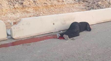 Kenangan Terburuk 2019: Ibu Palestina Dibunuh Dekat Pos Pemeriksaan