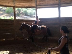 horseback riding minardi wine tour