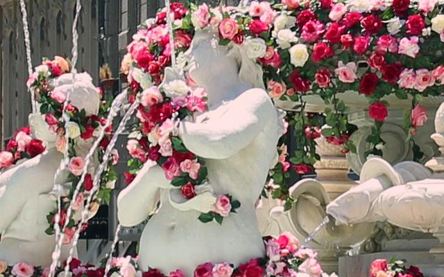 festival_roses_lyon_askaelle