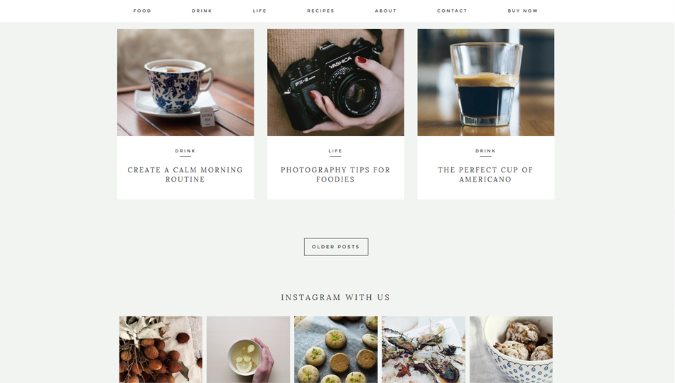 wp_theme_kindred_2
