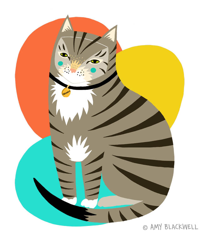 cat_illustration_amy_blackwell