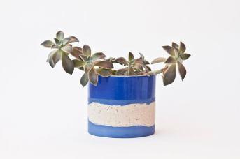 vase-plante