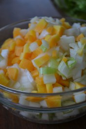 Mirepoix- Carrot, Celery, and Onion